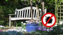 Zabraňte klíšťatům, aby se vám dostaly na zahradu
